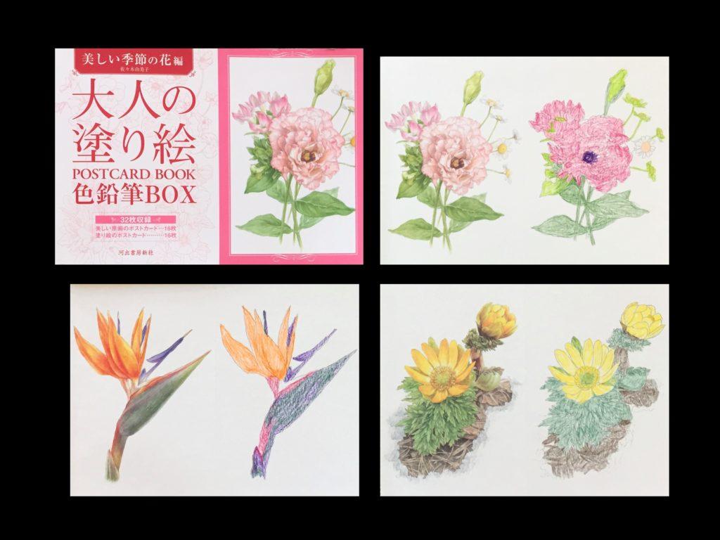 大人の塗り絵の効果がすごい!塗り絵歴7年のおばあちゃんの変化 大人の塗り絵 色鉛筆BOX【美しい季節の花編】の作品