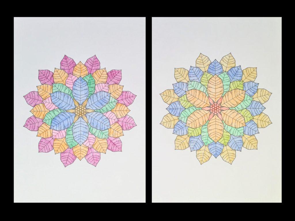 高齢者の塗り絵は脳トレに最適!塗り絵の種類から効果や道具をご紹介 り絵「花のモチーフ」01