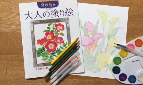 大人の塗り絵おすすめ道具4種!初心者も使いやすい色鉛筆や水彩ペン タイトル画像
