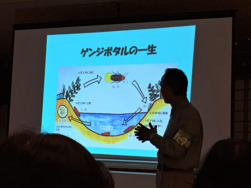 石川県金沢のホタルの観賞時期・時間帯・おすすめスポット2019 ホタル解説会