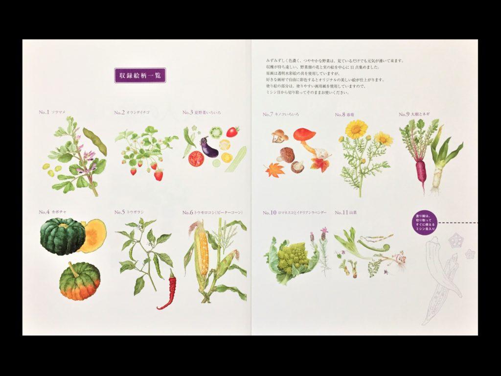 【初心者向け】大人の塗り絵の種類から塗り方やコツまでご紹介! 「大人の塗り絵」【野菜畑の花と実編】一覧