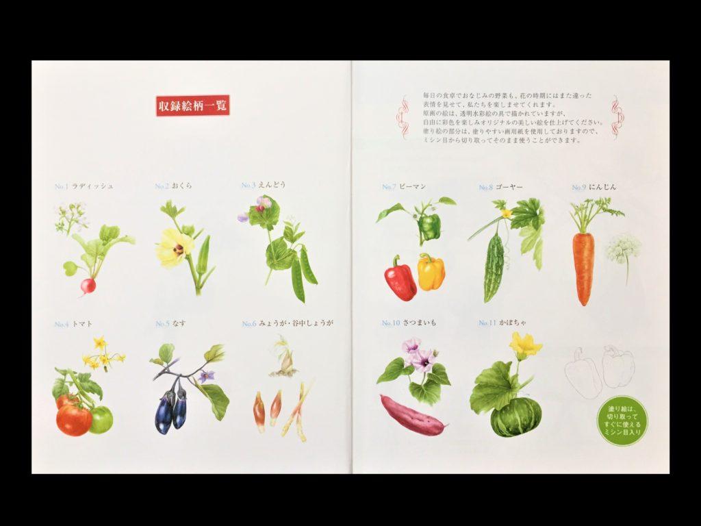 【初心者向け】大人の塗り絵の種類から塗り方やコツまでご紹介! 「やさしい大人の塗り絵」【野菜と花編】一覧
