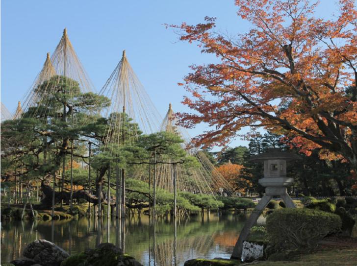 【紅葉】石川・金沢兼六園の見頃・混雑時間・駐車場やライトアップ2018について 見どころ 唐崎松