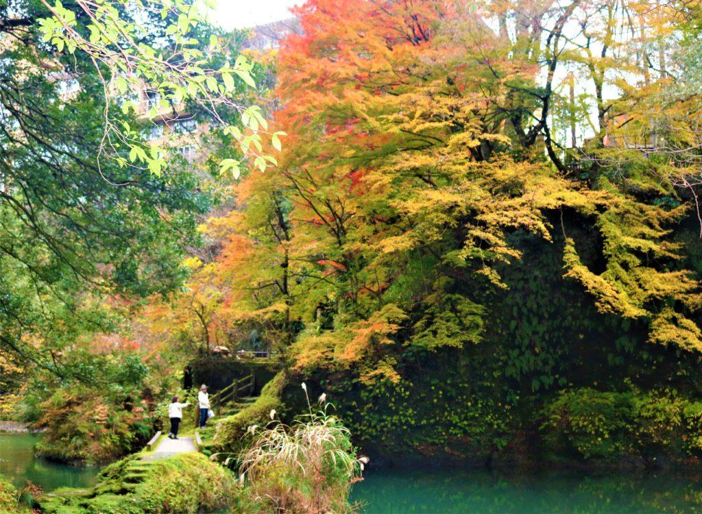 【紅葉】石川・金沢兼六園の見頃・混雑時間・駐車場やライトアップ2019について 鶴仙渓の紅葉