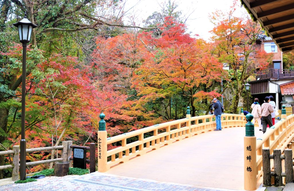 【紅葉】石川・金沢兼六園の見頃・混雑時間・駐車場やライトアップ2019について 鶴仙渓 あやとりはしと紅葉