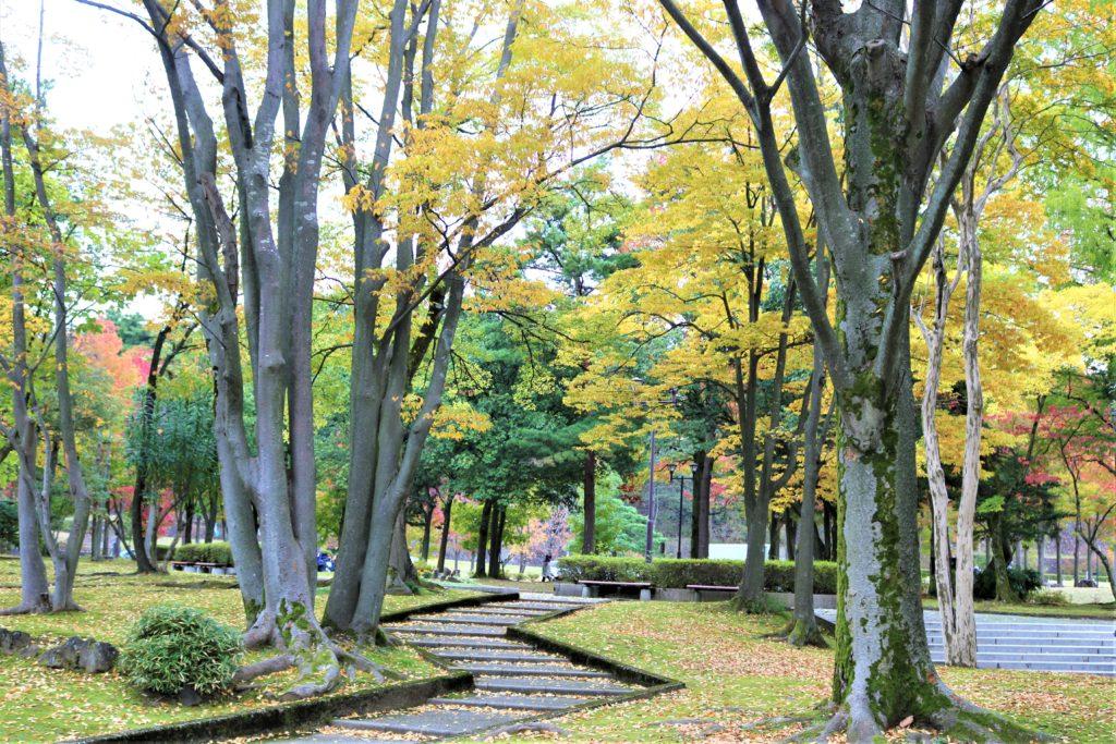 【紅葉】石川・金沢兼六園の見頃・混雑時間・駐車場やライトアップ2021について 中央公園