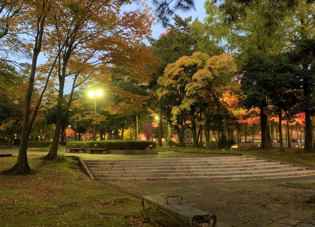 【紅葉】石川・金沢兼六園の見頃・混雑時間・駐車場やライトアップ2021について 中央公園 夕暮れ時