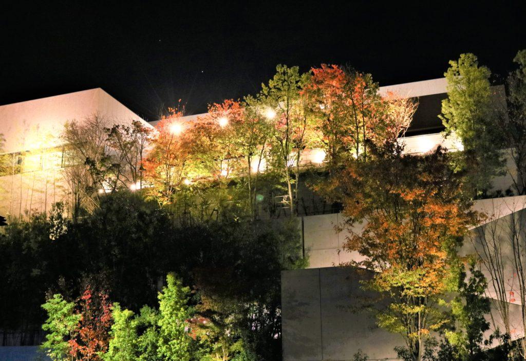 【紅葉】石川・金沢兼六園の見頃・混雑時間・駐車場やライトアップ2021について 金沢建築館ライトアップ