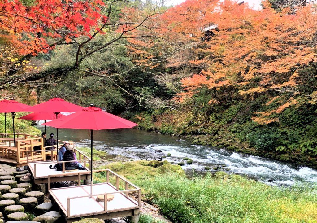 【紅葉】石川・金沢兼六園の見頃・混雑時間・駐車場やライトアップ2019について 鶴仙渓川床とメニュー