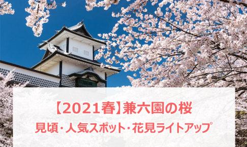 【2021春】兼六園の桜の見頃・開花予想・人気スポット10ヵ所や花見ライトアップ