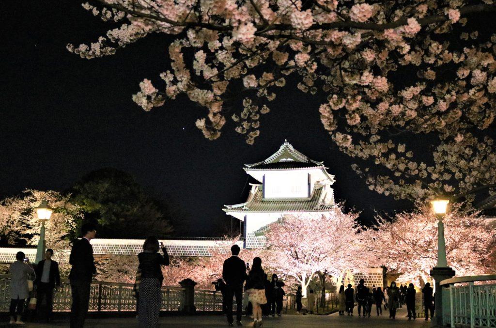【2020春】兼六園の桜の見頃・開花予想・人気スポット10ヵ所や花見ライトアップ 4月13日兼六園 石川門ライトアップ2