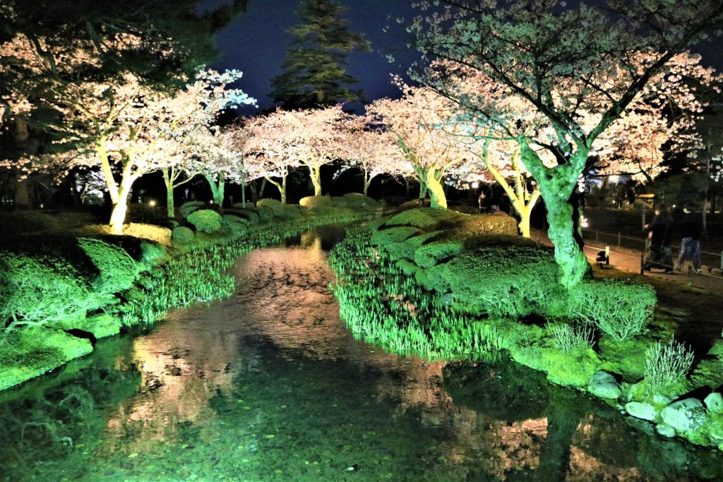 【2020春】兼六園の桜の見頃・開花予想・人気スポット10ヵ所や花見ライトアップ 4月13日兼六園 石川門ライトアップ3