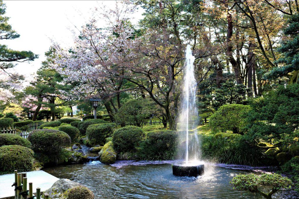 【2020春】兼六園の桜の見頃・開花予想・人気スポット10ヵ所や花見ライトアップ 観桜期の噴水