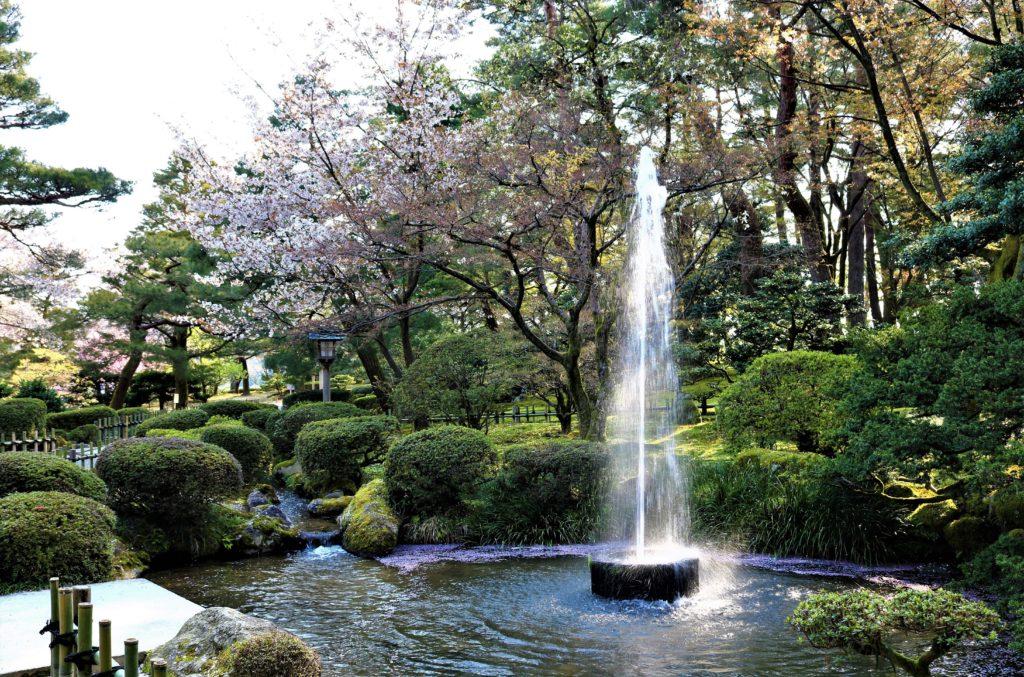 【2021春】兼六園の桜の見頃・開花予想・人気スポット10ヵ所や花見ライトアップ 観桜期の噴水
