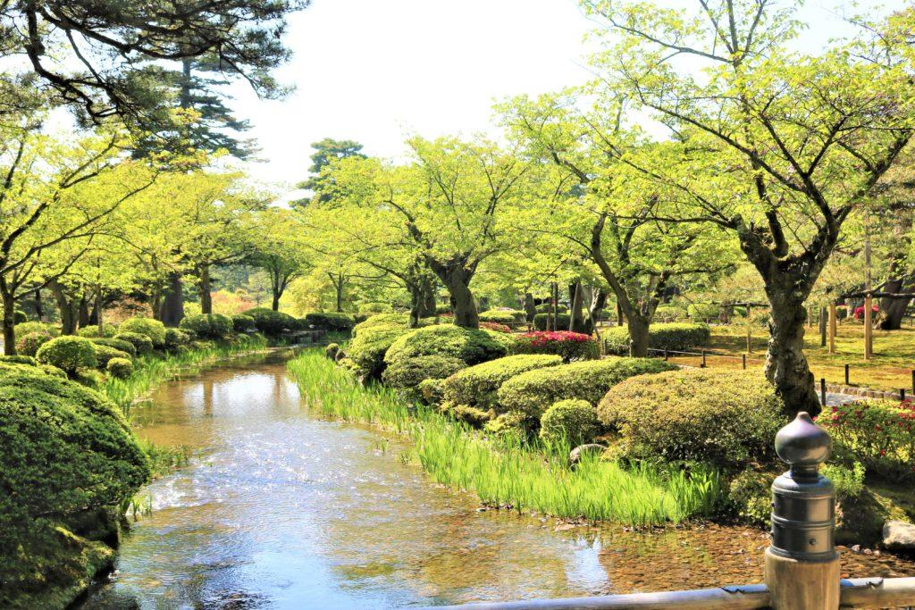 【2021春】兼六園の桜の見頃・開花予想・人気スポット10ヵ所や花見ライトアップ 花見橋からの眺め 兼六園菊桜が満開の頃