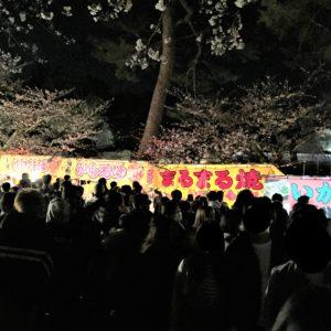 【2020春】兼六園の桜の見頃・開花予想・人気スポット10ヵ所や花見ライトアップ ライトアップ屋台