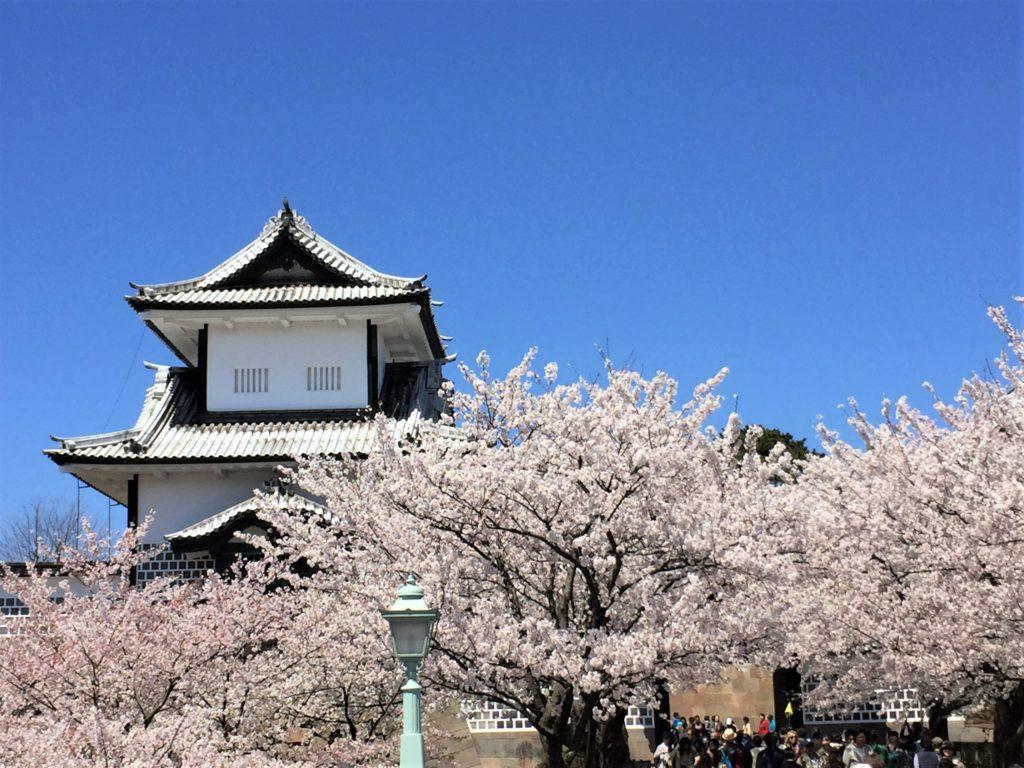 【2020春】兼六園の桜の見頃・開花予想・人気スポット10ヵ所や花見ライトアップ 4月13日兼六園 石川門