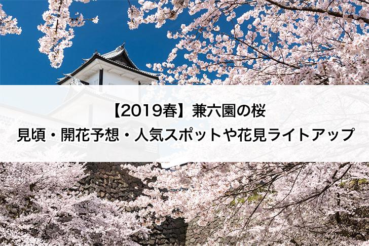 【2019春】兼六園の桜の見頃・開花予想・人気スポットや花見ライトアップ 兼六園 桜満開 タイトル画像
