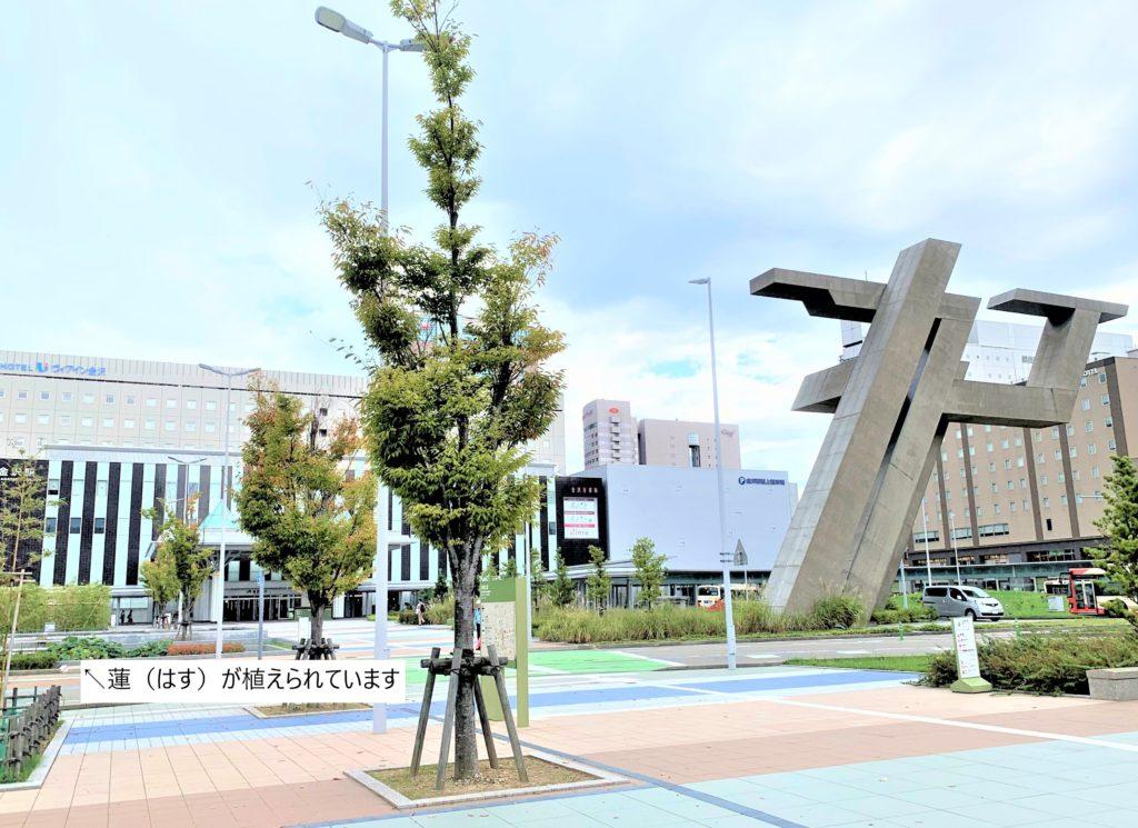 兼六園・金沢城公園など金沢観光には【バス】【自転車】がおすすめ! 金沢駅西広場