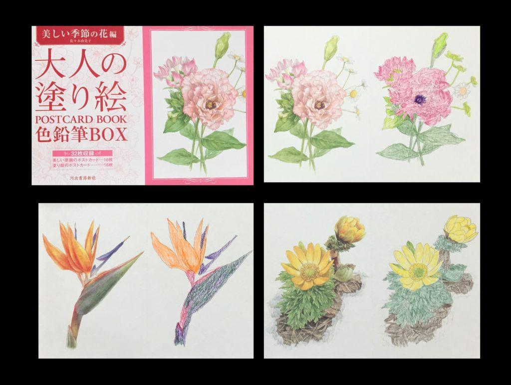 大人の塗り絵の作品集!82歳おばあちゃんがハマった塗り絵をご紹介 大人の塗り絵 色鉛筆BOX【美しい季節の花編】