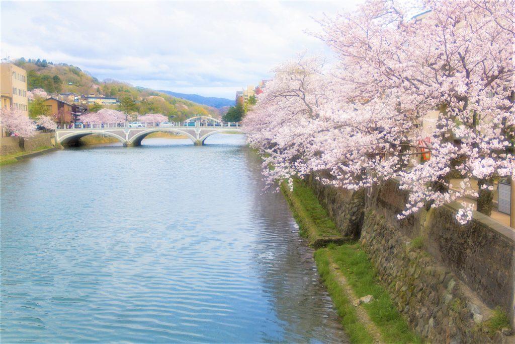 【2020春】兼六園の桜の見頃・開花予想・人気スポット10ヵ所や花見ライトアップ 浅野川 桜並木