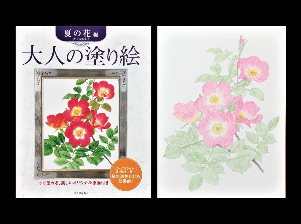 老人向けの暇つぶしグッズ25選【使う・見る・聞く】の3パターン別 一般的な塗り絵
