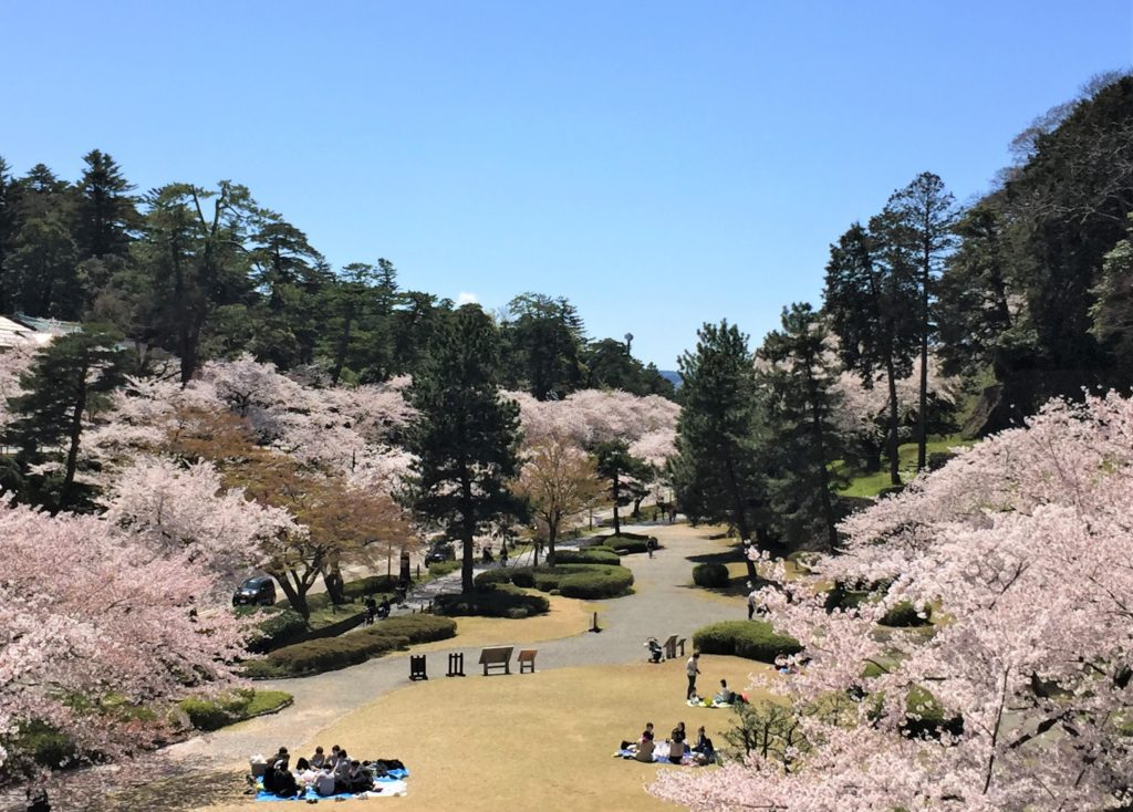 【2020春】兼六園の桜の見頃・開花予想・人気スポット10ヵ所や花見ライトアップ 石川橋からの眺望02
