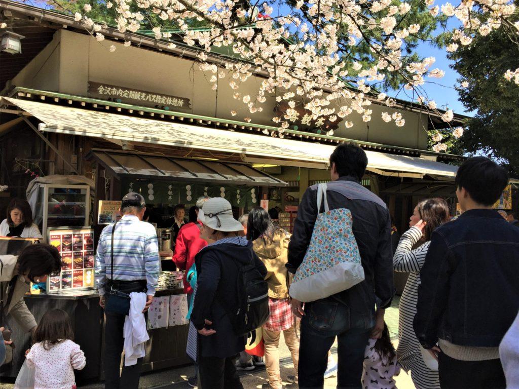 【2020春】兼六園の桜の見頃・開花予想・人気スポット10ヵ所や花見ライトアップ 茶店02