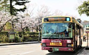 【2020春】兼六園の桜の見頃・開花予想・人気スポット10ヵ所や花見ライトアップ  兼六園シャトル