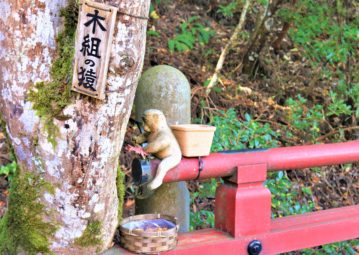 【紅葉】石川・金沢兼六園の見頃・混雑時間・駐車場やライトアップ2021について 那谷寺 木組みの猿